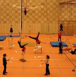спортивное покрытие из линолеума / для внутреннего пространства / для спортивных залов