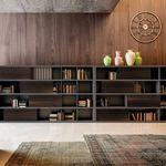 модульный книжный шкаф / высокий / низкий / современный