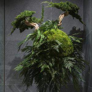 стабилизированное декоративное растение